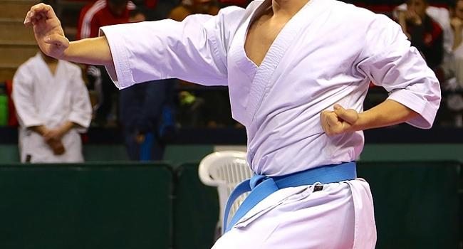 Sakarya'da karate heyecanı