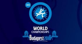 Dünya Güreş Şampiyonası başladı