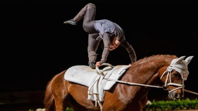 Atlı cimnastik heyecanı Fransa'da yaşandı