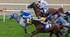 At yarışlarında 59. TBMM Koşusu Ankara'da yapılacak