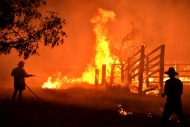Dünya Ralli Şampiyonası'na yangın engeli