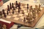 Avrupa Satranç Şampiyonası çevrim içi yapıldı