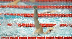 Avrupa Kısa Kulvar Yüzme Şampiyonası